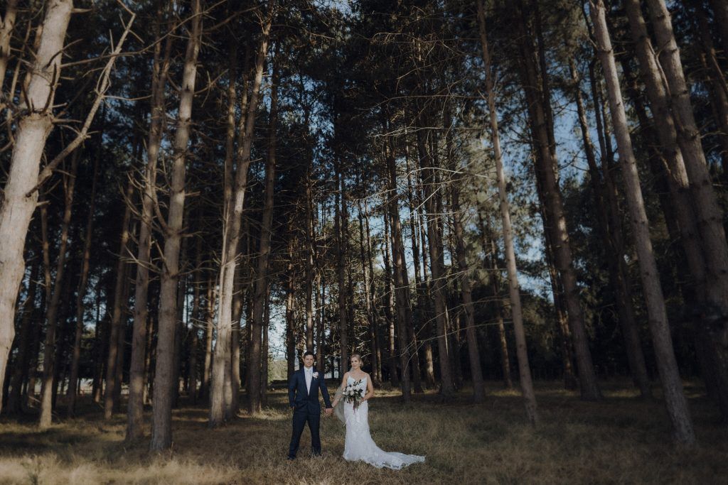 A contemporary bride and groom portrait in forest by wellington wedding photographer Binh Trinh